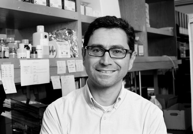 Ardem Patapoutian y sus colaboradores descubrieron un nuevo canal iónico sensible a presión (mecanorreceptor) al cual se le nombró Piezo1. Además, descubrieron un segundo gen y se denominó Piezo2. Foto: EFE.