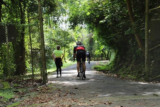 La habilitación de senderos con adoquines, rampa para discapacitados, barandales seguros y poda de los árboles a fin de mantener la visibilidad del paisaje natural. Foto/Cortesía