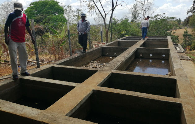 """Las muestras de agua analizadas evidenciaron que el mantenimiento que recibe la planta de tratamiento """"no es el más adecuado""""."""