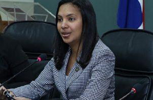 De Castro ha ocupado diversos cargos en el Ministerio Público, entre estos fiscal superior de litigación.