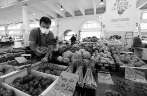 El financiamiento público y privado para la investigación agropecuaria, contribuyen al acceso a los alimentos de calidad a la población. Foto: EFE.