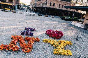 Lewis Miller ha colocado arreglos florales por toda la Ciudad para levantar la moral durante la pandemia. Foto / Nina Westervelt para The New York Times.
