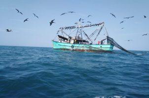 En la misiva se les reiteró el compromiso del Acuerdo sobre las Poblaciones de Peces Transzonales y las Poblaciones de Peces Altamente Migratorios, así como el Código de Conducta para la Pesca Responsable.