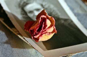 Cada martes se aborda un tema distinto relacionado con la fotografía con personalidades reconocidas. ILUSTRATIVA / PIXABAY