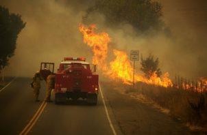 El gobernador de California, Gavin Newsom, declaró el estado de emergencia. Fotos: EFE.