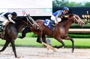Mr. Big News, con el jinete panameño Gabriel Sáez, es uno de los 18 caballos que irán al partidor.