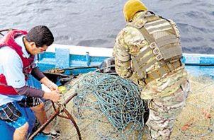 El atún, el bacalao y el tiburón son las especies más vulnerables con este tipo de prácticas de pesca ilegal, por su alto valor comercial en los mercados internacionales.