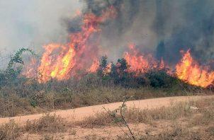 """""""Estamos declarando desastre nacional por sequía y por incendios"""", dijo la presidenta transitoria del país, Jeanine Áñez. Fotos: Archivo/Ilustrativa."""