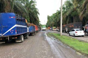 El asalto fue en la Extractora de Aceite Sharon, en la Esperanza, distrito de Barú. Foto: Mayra Madrid.