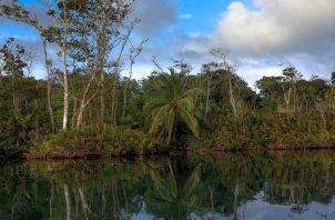 El horario de visita en el Parque Nacional Chagres es de 8:00 a.m. a 4:00 p.m., de lunes a domingo.