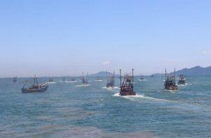 La Comisión de Asuntos Agropecuarios de la Asamblea Nacional aprobó en primer debate el Proyecto de Ley 13 de 2020, que regula la Pesca y la Acuicultura en la República de Panamá.