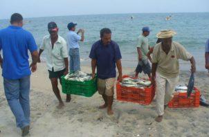 El ministro de Desarrollo Agropecuario, Augusto Valderrama, señaló que Panamá tenía más de 62 años con la misma norma de pesca.