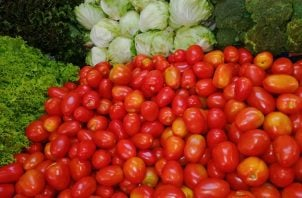El tomate (3x3 y perita) pasó de 30 centavos la libra, a 80 centavos la libras para los mayoristas. Foto/Cadena de Frío