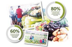 Las lluvias afectaron toda la producción de hortalizas de Tierras Altas ocasionando desde ya desabastecimiento de papa, cebolla.