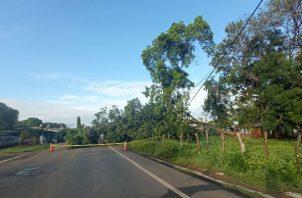 La situación fue atendida por los Bomberos de Herrera y técnicos de la empresa eléctrica. Foto: Thays Domínguez.