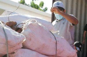 Los productores recibieron asistencia técnica y acompañamiento en lo que corresponden a la preparación de tierras, siembra y levantamiento de cultivos.