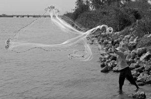 Se cuenta con una política sectorial que define objetivos comunes para garantizar la cooperación conjunta en términos de gestión, manejo y desarrollo de la pesca y la acuicultura en la región Sica, la cual fue definida en 2005 y actualizada en 2015. Foto: EFE.