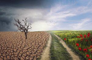 Cambio climático. ILUSTRATIVA / PIXABAY