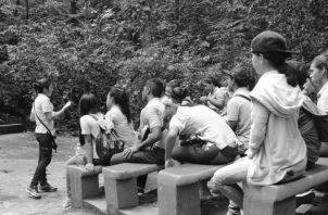 En foto de archivo, estudiantes del área metropolitana recibiendo capacitación en el marco del Día del Árbol por parte de MiAmbiente.Foto: Cortesía.