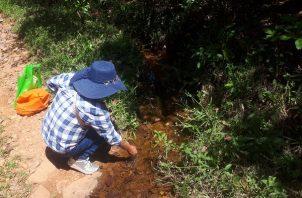 Niños y adultos de La Lima beben agua de quebradas y ríos.