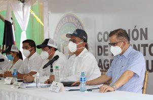 Los agroparques se establecerían en la región occidental del país, región Central, Panamá Oeste y Panamá Este, potenciando las alianzas público-privada.