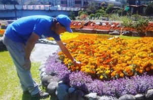 Los visitantes deberán cumplir con las medidas de bioseguridad. Foto: Mayra Madrid