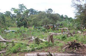 Miviot censura invasión de tierras y aboga por respeto a la propiedad privada. Foto cortesía Miviot