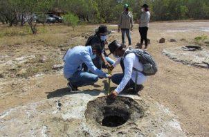 El proyecto de investigación en 'Los Pocitos' es coordinado por la Universidad de Panamá, sede en Veraguas.