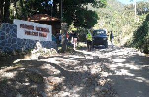 La reapertura de las áreas protegidas del país, inició el 16 de enero, y desde entonces por el Puesto de Control de Los Llanos han ingresado 25 turistas con sus respectivos guías.