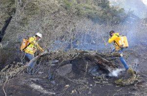 El funcionario señaló que el mayor número de incendios de masa vegetal se registran durante los meses de enero a abril debido a la época seca y la brisa que corre con mayor fuerza.