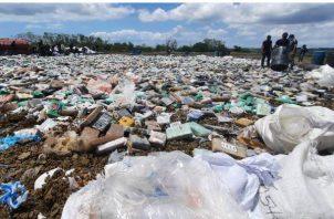 28.7 toneladas de drogas fueron destruidas este viernes 5 de marzo. Foto:Policía Nacional