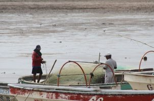 Este sería el segundo intento de los pescadores artesanales de esta región del país para lograr consolidarse en una asociación.