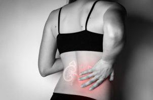 La presión arterial elevada y la diabetes mellitus producen casi un 50% de daño en el riñón.
