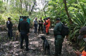 Personal del Sinaproc, utilizando una camilla de rescate, sacó el cuerpo del área. Foto: Diómedes Sánchez