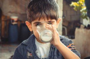 La leche y su inclusión en los programas de alimentación escolar. Foto: Ilustrativa / Pixabay