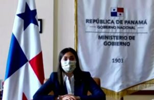 La sustentación del proyecto por la ministra Tewaney se realizó de manera virtual. Internet