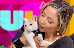 Marelissa Him y la gata que adoptó. Instagram/@jeloutvn