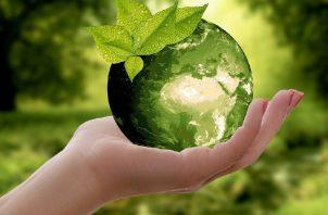 Actividad por la Tierra. Pixabay