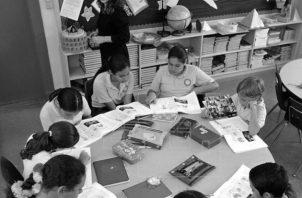 """La meta del Centro debería ser la incorporación de las neurociencias aplicadas a la Educación en """"todos"""" los programas de formación del país. Foto: EFE."""