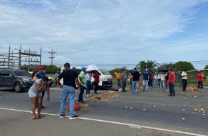 Los afectados le exigen a las autoridades que se les reconozca las pérdidas registradas por causa de las lluvias que afectaron sus cosechas. Foto: Cortesía Mida