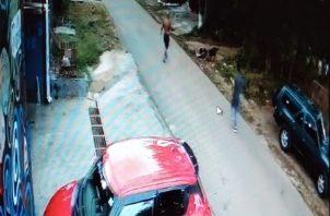 El mismo perro que atacó a la señora, en compañía de otro, atacan a un can más pequeño. Foto: José Vásquez