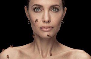 Angelina Jolie. Foto: Dan Winters