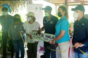 Ruta del Manglar en Isla Cañas. Foto: Cortesía ATP
