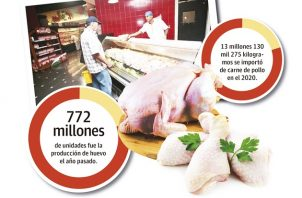 La población industrial avícola se divide en pollos de engorde, gallinas ponedoras y reproductoras.