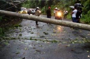 En el área de Sabanitas se cayó un poste del tendido eléctrico, mientras que en la comunidad de Santa Rita Arriba, un árbol cayó sobre el techo de una residencia. Foto: Diomedes Sánchez