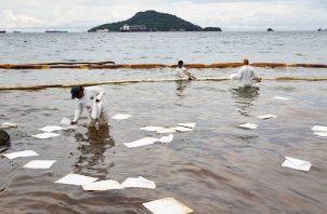 Personal de la AMP comenzó con los trabajos de limpieza y mitigación en isla Taboga desde el martes 8 de junio. Foto: Cortesía AMP