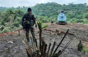 Efectivos del Senafront y el Senan realizan operativos conjuntos en la frontera con Colombia para garantizar la seguridad en el área. Cortesía