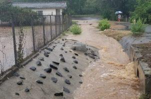 Los residentes temen que el agua llegue hasta sus casas y cause daños a sus pertenencias. Foto Thays Domínguez