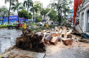La tormenta tropical Dolores nació este viernes en aguas del Pacífico mexicano. Foto: EFE