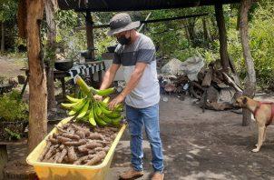 David y sus hermanos cultivan la tierra y venden los productos a los visitantes. AurelioMartínez